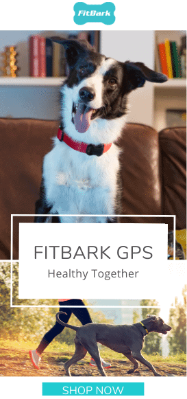 FitBark Dog GPS & Health Tracker